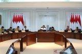 Presiden Jokowi perintahkan pembangunan industri substitusi produk impor