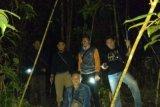 KPHP Bintan-Tanjungpinang amankan puluhan ton kayu pembalakan liar