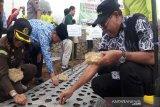 Kementan: Temanggung sentra pengembangan produksi benih bawang putih