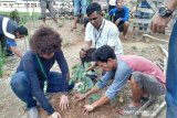 210.000 bibit pohon ditanam  di hutan  lindung Lahat