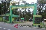 Seorang pendaki amatir  tewas di Gunung Lorekatimbu Poso