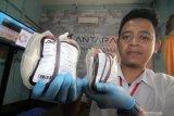 Seorang petugas PMI Pontianak Yus Andi memperlihatkan beberapa kantung darah dari pendonor di sela kegiatan Donor Darah di Kantor LKBN Antara Biro Kalbar di Pontianak, Kamis (19/12/2019). Kegiatan tersebut merupakan rangkaian kegiatan dari peringatan HUT ke-82 LKBN Antara. ANTARA FOTO/Jessica Helena Wuysang