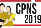 Pemko Pekanbaru terima 1.444 sanggahan dari CPNS tidak lolos