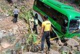 Bus wisata rombongan Kemenag Kediri terperosok ke jurang di Pacitan