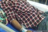Warga Parung dilarikan ke rumah sakit akibat digigit  ular berbisa