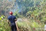 Menkopolhukam: Indonesia berhasil minimalkan kebakaran hutan