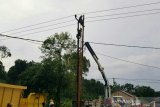 135 gardu PLN terganggu  akibat angin kencang di Palembang