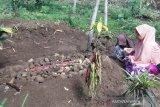 Polres Tasikmalaya selidiki dua pemuda tewas akibat minuman keras oplosan