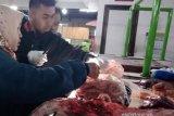 55 kg daging tak layak konsumsi di Kota Magelang dimusnahkan