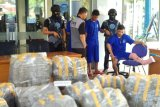 BNNP Sumbar ungkap peredaran ganja sebanyak 183 kilogram