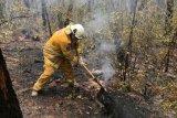 Kebakaran di Australia, ribuan penduduk dievakuasi dari kawasan wisata