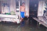 BPBD Kotim waspadai meningkatnya potensi banjir