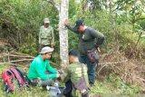LSM bantu kamera trap pantau  harimau di Sumsel