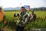 Bupati Batang minta Dipertan berikan pendampingan modernisasi pertanian