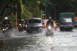 Sejumlah pengendara menorobos genangan air saat banjir melanda kawasan Jalan Lambung Mangkurat Banjarmasin, Kalimantan Selatan, Selasa (31/12/2019). Banjir yang sering melanda kawasan jalan tersebut diakibatkan intensitas hujan yang tinggi serta diperparah sistem drainase yang buruk. Foto Antaranews Kalsel/Bayu Pratama S.