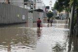 Pengemudi 'ojol' terjang banjir demi antar pesanan