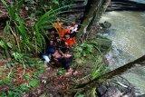 Seorang pemuda tenggelam di air terjun Jantur Doyan