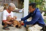 DPKP Gumas prioritaskan vaksin rabies ke tujuh kecamatan