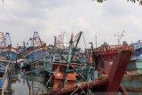 Takut di tabrak kapal Vietnam, Pendapatan nelayan Natuna berkurang 75 persen