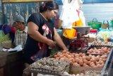 Tingginya harga telur ayam picu inflasi di Jember 0,54 persen