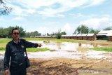 Komisi IV DPRD Kulon Progo: tempat relokasi pedagang Glagah tidak layak