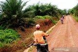 Gubernur usul dana bagi hasil kelapa sawit ke Jokowi