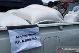 Bulog NTB menggelontorkan 200 ton beras medium per hari