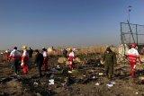 Pengantin baru warga Kanada menjadi korban kecelakaan pesawat di Iran
