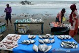 Stok ikan laut menurun