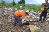 Nelayan temukan mayat tanpa identitas di perairan Way Lunik Bandarlampung