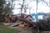 Sejumlah pohon di Pantai Pariaman tumbang dan menimpa gerobak pedagang (Video)