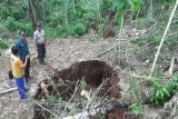 BPBD Gunung Kidul belum memiliki peta sungai bawah tanah