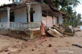 Abrasi pantai kembali terjang di Muara Batang Gadis dan Natal