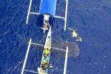Seekor hiu paus berenang mendekati perahu pengunjung di pantai Botubarani di Kabupaten Bone Bolango, Gorontalo, Kamis (16/1/2020). Warga setempat mencatat sebanyak lima ekor hiu paus kembali datang sejak awal Januari 2020. ANTARA FOTO/Adiwinata Solihin/nym.