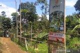 Empat agrowisata di Garut percontohan di Indonesia, sumber keuntungan tambahan