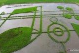 Karya seni Not Khatulistiwa menarik ribuan pengunjung