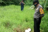 Penjelasan polisi terkait penemuan jasad wanita tanpa busana oleh seorang pemulung