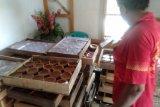 Kue keranjang umumnya dipesan dua pekan menjelang Imlek
