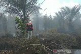 Irwasda Polda Riau lapor balik penggugat dirinya atas dugaan pencemaran nama baik