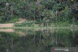 Pemkab Garut kembangkan potensi wisata Situ Cukang Batu di Peundeuy