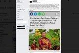 Polda Jawa Tengah mulai limpahkan kasus Keraton Agung Sejagat