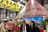 Indonesia bisa belajar dari Spanyol datangkan wisatawan