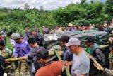 Harimau Sumatera dibawa dari Muara Enim ke Lampung masih perlu observasi