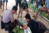 Warga digegerkan penemuan jasad bayi laki-laki mengapung di daerah aliran sungai