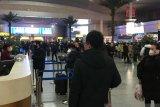 Ular atau kelelawar jadi penyebar virus corona di Wuhan China