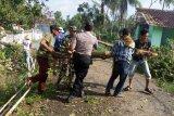 Diterjang angin puting beliung, puluhan rumah di Trimurjo rusak