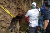 Dua penambang emas illegal tewas tertimbun longsor di Jambi
