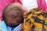 Informasi terpopuler sepekan, bayi lahir dengan jahitan di kepala hingga Keraton Sejagat ala Pariaman