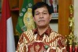 Universitas Sumatera Utara berencana membuka Program Studi Kelapa Sawit