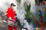 12 kasus demam berdarah terjadi di Sumbawa Barat